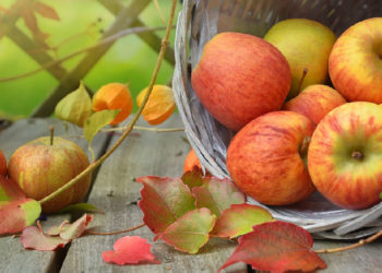 Apfel Kalorien, Kohlenhydrate & Zucker | Die Nährwerte – sind Äpfel gesund?