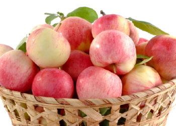 Apfel Vitamine | Nicht nur der Vitamin C Gehalt ist interessant | mit Tabelle