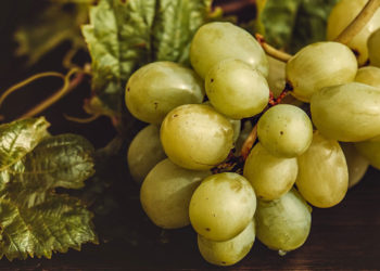 Kalorien, Kohlenhydrate & Zucker in Trauben | Unterschiede bei Grün, Rot & Blau